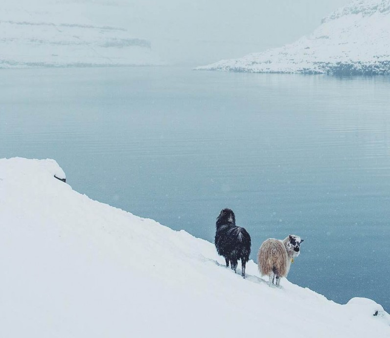 Faroe Islands/ WGSN